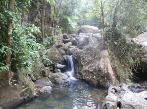 one of the smaller falls on the trail to La Mina